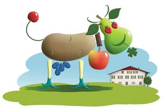 Marché d'Yverdon, stand légumes bio des Vulliemin